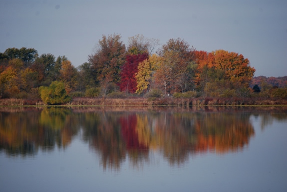 Lake Bruce Fall Foliage